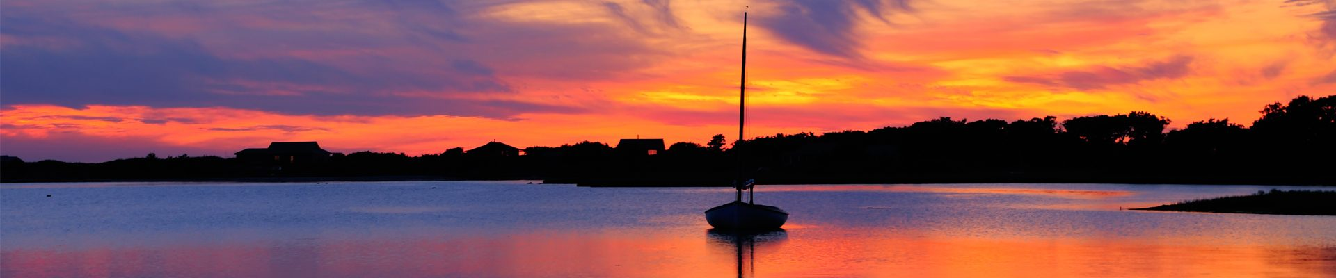 Martha's Vineyard Evening Special